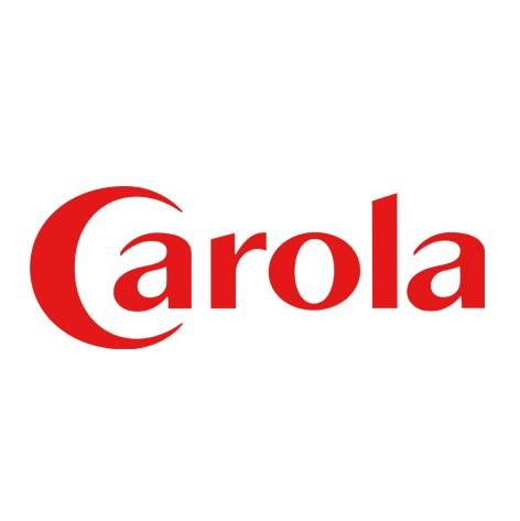 carola - Corner #1 - 2017
