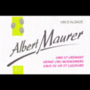 Vins Maurer Fresh Merch Street Bouche Festival #2