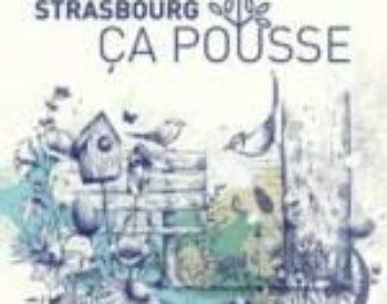 strasbourg ca pousse animation street bouche festival #3