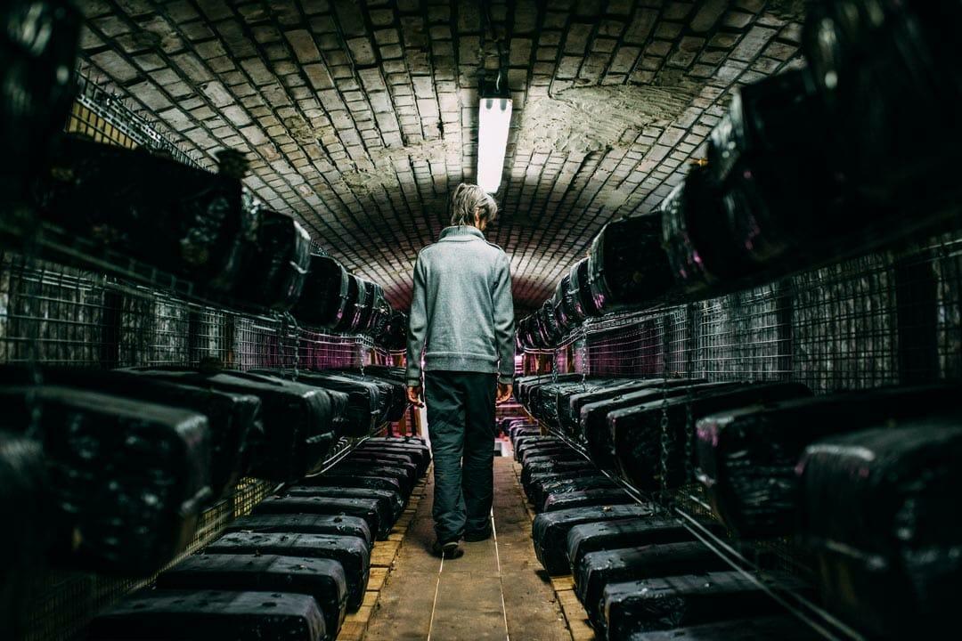 Le bunker comestible Street Bouche magazine2 - Le Bunker comestible
